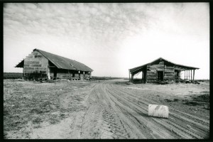 Plantation barn and cabin . Jonestown , Coahoma County , Mis